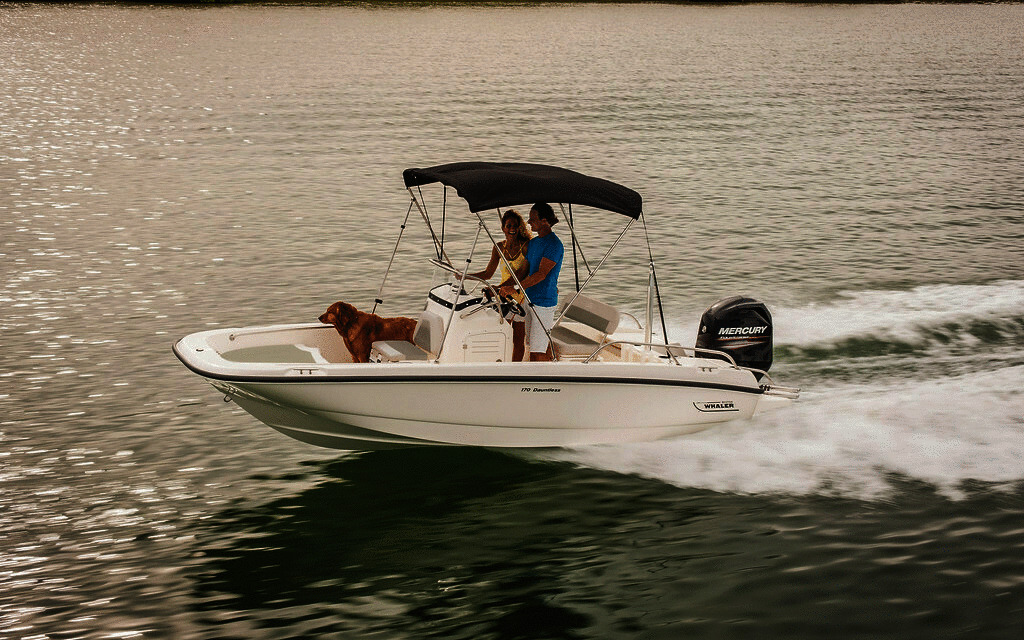 2020 Boston Whaler 170 Dauntless