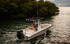 2019 Boston Whaler 240 Dauntless
